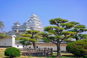 姫路城の連立天守群の写真素材 [FYI03123015]