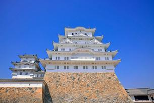 姫路城の見上げる大天守と青空の写真素材 [FYI03123020]