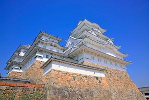姫路城の連立天守群と青空の写真素材 [FYI03123022]