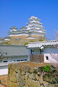 姫路城の連立天守群と石垣の写真素材 [FYI03123023]