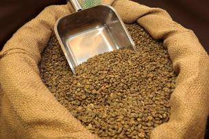 生のコーヒー豆の写真素材 [FYI03123257]