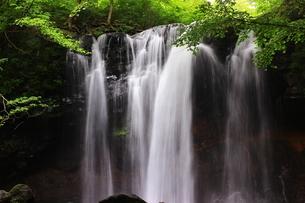 那須高原 乙女の滝の写真素材 [FYI03123466]