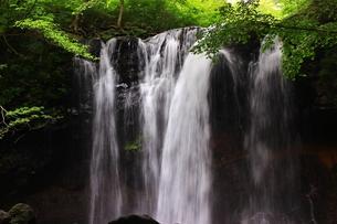 那須高原 乙女の滝の写真素材 [FYI03123467]