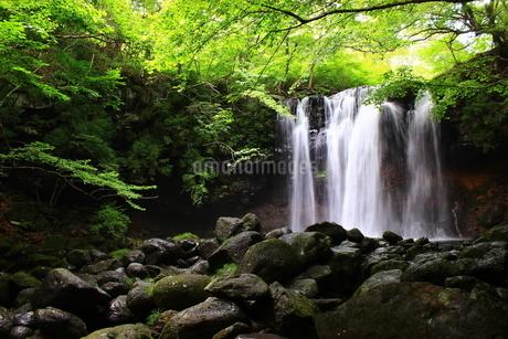 那須高原 乙女の滝の写真素材 [FYI03123469]