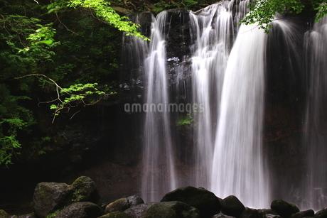 那須高原 乙女の滝の写真素材 [FYI03123470]