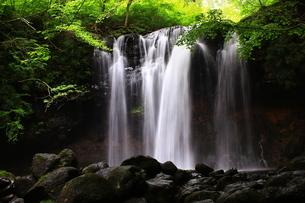 那須高原 乙女の滝の写真素材 [FYI03123471]