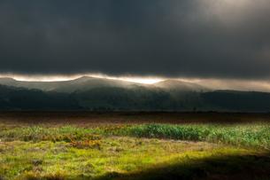 暗雲の空より光射す八島ヶ原湿原の写真素材 [FYI03123584]