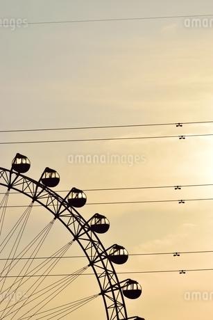 夕日でシルエットになる観覧車の写真素材 [FYI03123592]