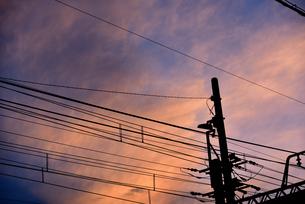 夕方の電柱の写真素材 [FYI03123595]
