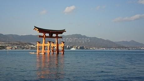 厳島神社の鳥居の写真素材 [FYI03123641]