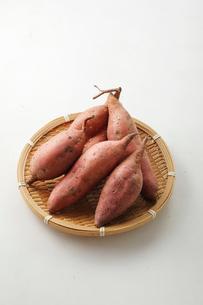 サツマイモの写真素材 [FYI03123689]