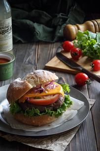 ハンバーガーの写真素材 [FYI03123750]