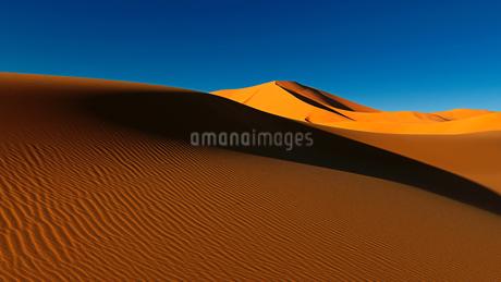 サハラ砂漠の写真素材 [FYI03123801]
