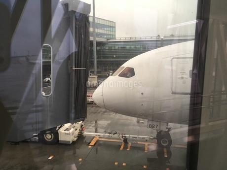 空港に到着した飛行機の写真素材 [FYI03123949]