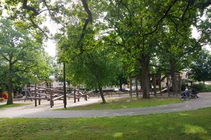 緑の中の公園の写真素材 [FYI03124072]