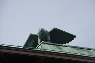 鳥の像の写真素材 [FYI03124073]