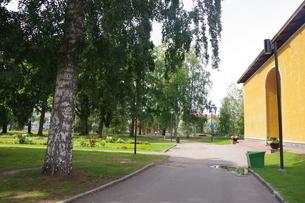 木と建物の写真素材 [FYI03124075]