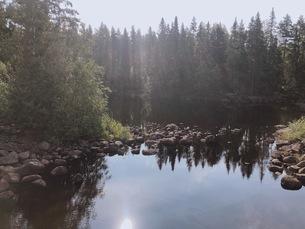 湖と森の写真素材 [FYI03124081]