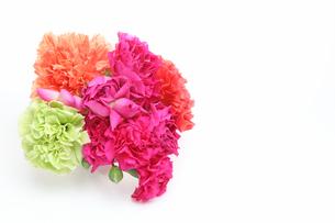 カーネーションの花束の写真素材 [FYI03124170]