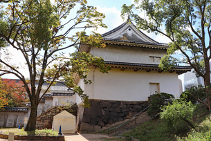 大阪城・千貫櫓の写真素材 [FYI03124276]