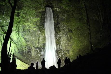 玉簾の滝 ライトアップの写真素材 [FYI03124300]