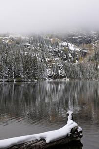 霧の山を背景に見える残雪の針葉樹林と湖の写真素材 [FYI03124306]