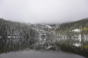 霧が覆いかぶさるように見下ろし残雪に映える針葉樹とアスペンが見える山岳湖の写真素材 [FYI03124318]