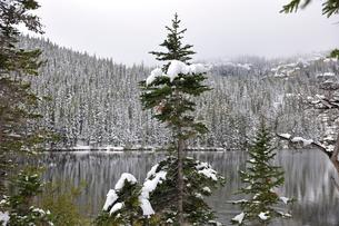 降雪が山岳部に味わいをつけた湖の景観の写真素材 [FYI03124346]