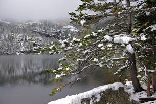雪の山岳湖と霧に覆われた背景の山の写真素材 [FYI03124354]