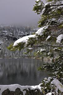 背景の山を霧に覆われた降雪後の山岳部の湖の写真素材 [FYI03124374]