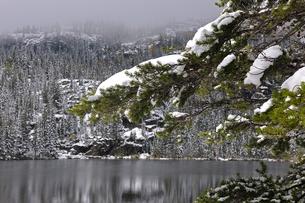降雪があった秋のベアーレイクの景観の写真素材 [FYI03124432]