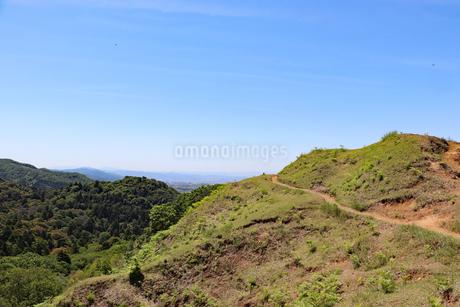若草山登山道の写真素材 [FYI03124482]