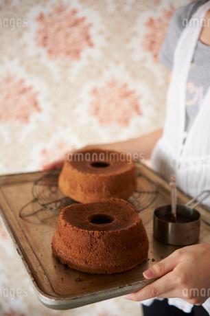 ミルクチョコシフォンケーキとココアシフォンケーキの写真素材 [FYI03124588]