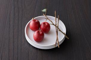 リンゴの枝とリンゴの写真素材 [FYI03124682]