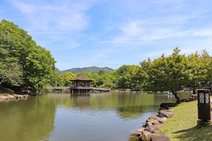 奈良公園・鷺池と浮見堂の写真素材 [FYI03124731]