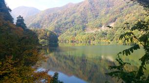 紅葉 湖面映りする紅葉の写真素材 [FYI03124815]