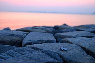 海辺に捨てられた空き缶2の写真素材 [FYI03125415]