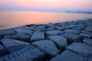 海辺に捨てられた空き缶の写真素材 [FYI03125416]