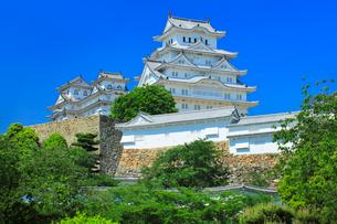 国宝姫路城と快晴の空の写真素材 [FYI03125427]