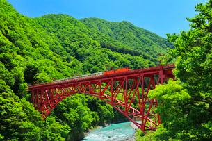 黒部峡谷鉄道トロッコ電車と快晴の空の写真素材 [FYI03125469]