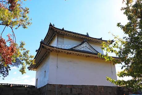 大阪城公園・一番櫓の写真素材 [FYI03125481]