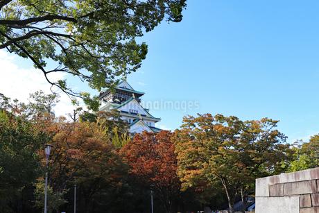 秋の大阪城公園の写真素材 [FYI03125526]