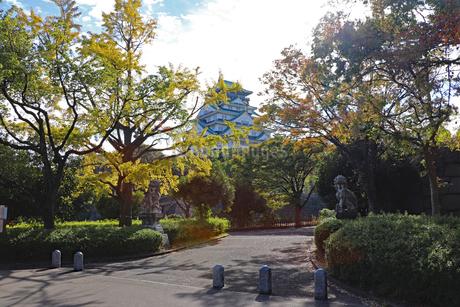 秋の大阪城公園の写真素材 [FYI03125529]