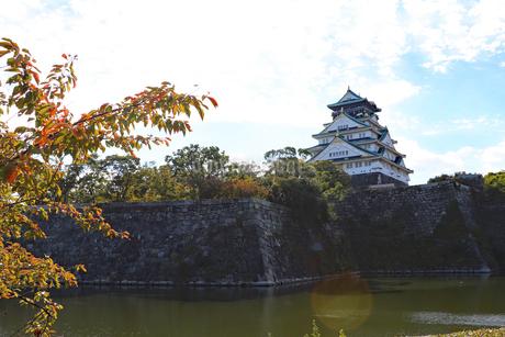 大阪城・内堀の風景の写真素材 [FYI03125533]