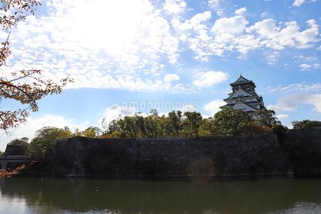 秋の大阪城公園の写真素材 [FYI03125535]