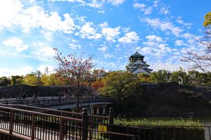 秋の大阪城公園の写真素材 [FYI03125536]