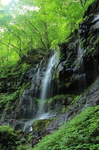 スッカン沢最大の絶景 素廉の滝の写真素材 [FYI03125910]
