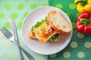 野菜たっぷりサンドの写真素材 [FYI03126011]