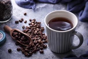 コーヒーの写真素材 [FYI03126020]