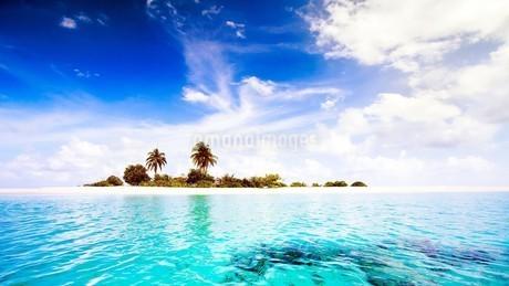 モルディブの海の写真素材 [FYI03126213]